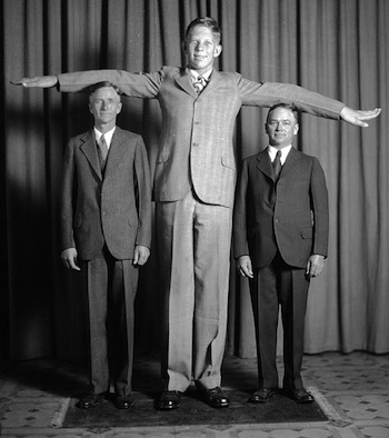 the tallest everything information on the tallest people and things